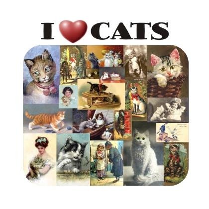 I LOVE CATS T-SHIRT Image