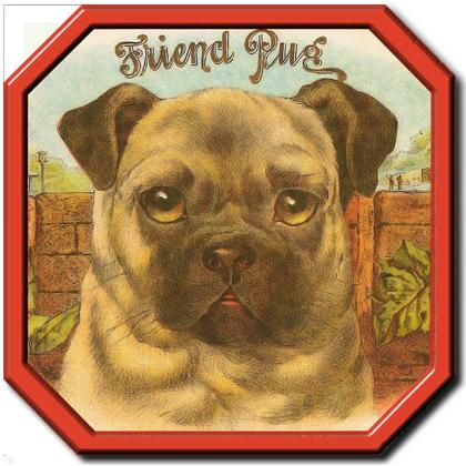 FRIEND PUG T-SHIRT Image