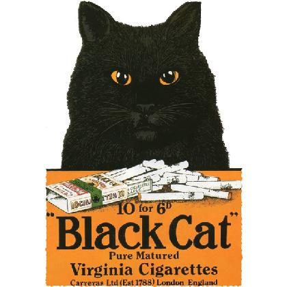 BLACK CAT VIRGINIA CIGS T-SHIRT Image