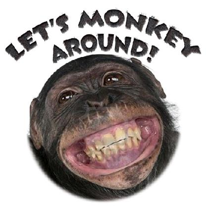 LET'S MONKEY AROUND T-SHIRT Image