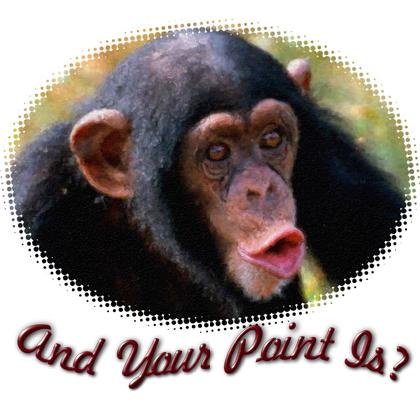 AND YOUR POINT IS? CHIMP T-SHIRT Image