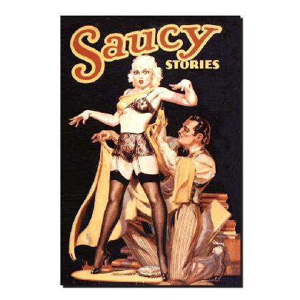 SAUCY STORIES T-SHIRT Image