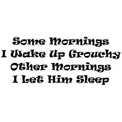SOME MORNINGS I WAKE UP GROUCHY T-SHIRT Image