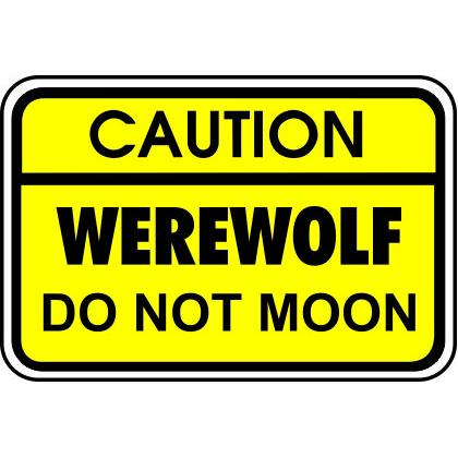 CAUTION WEREWOLF • DO NOT MOON T-SHIRT Image