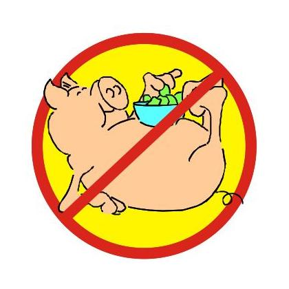 NO PIGS T-SHIRT Image