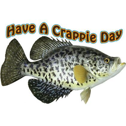 HAVE A CRAPPIE DAY T-SHIRT Image