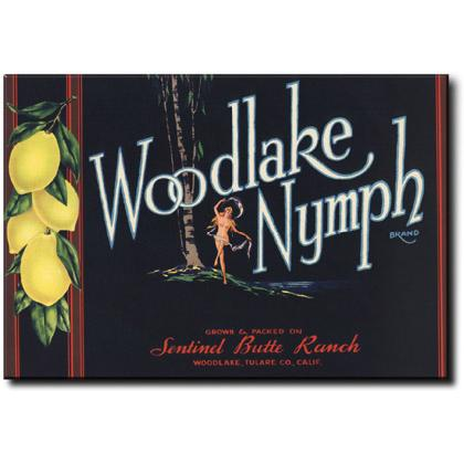 WOODLAKE NYMPH CRATE LABEL T-SHIRT Image