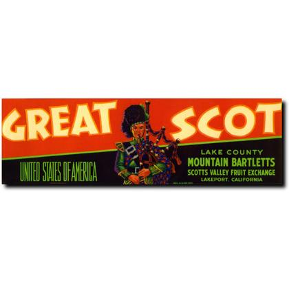 GREAT SCOT LAKE COUNTY PEARS CRATE LABEL T-SHIRT Image