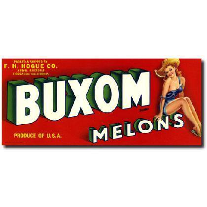 BUXOM MELONS T-SHIRT Image