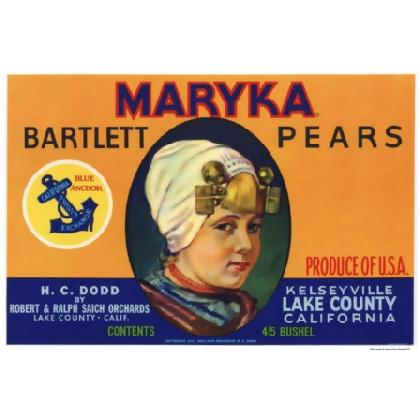 MARYKA PEARS CRATE LABEL T-SHIRT Image