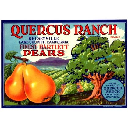 QUERCUS RANCH CRATE LABEL T-SHIRT Image