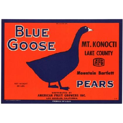 BLUE GOOSE PEARS T-SHIRT Image